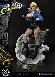 DC Comics: Black Canary 1:3 Scale Statue