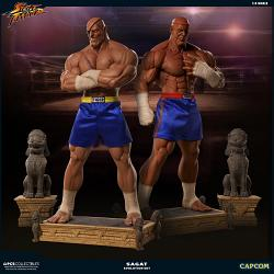 Street Fighter: Evolution Exclusive Sagat 1:3 Scale Statue Set