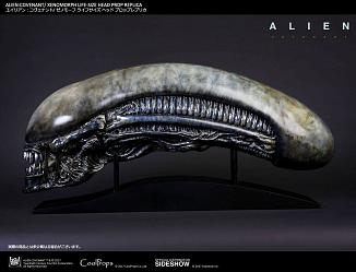 Alien: Covenant Replik 1/1 Xenomorph Kopf 90 cm