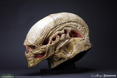 Aliens Resurrection: New Born Alien Life-Size Head